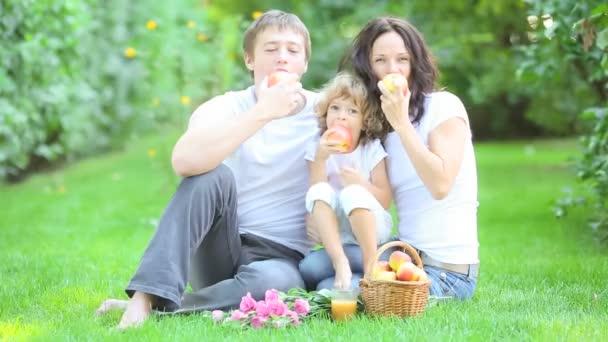 šťastná rodina s piknik venku