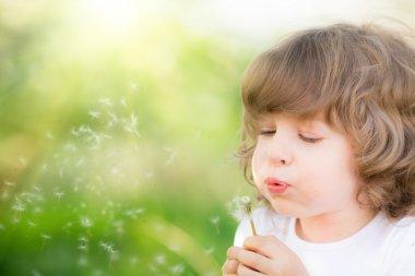 Happy child blowing dandelion