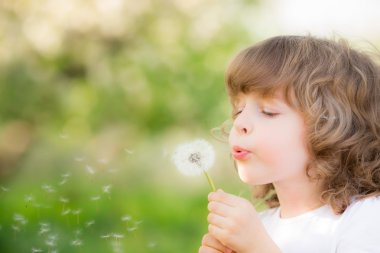 Happy child blowing dandelion