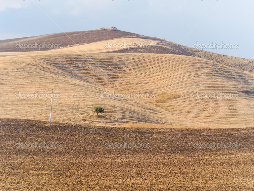 Paesaggio estivo della collina di sicilia vicino catania for Piani di serra in collina