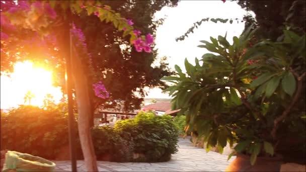Luxurious hotel courtyard