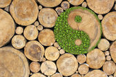 Fotografie Stacked Logs Background with ying yang