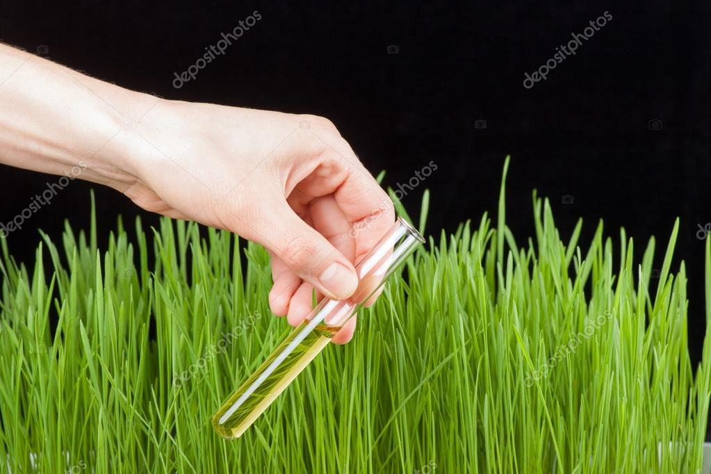 Hand with a test tube and grass. Fertilizer