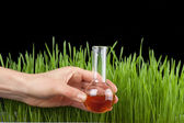 Photo Hand with a test tube and grass. Fertilizer
