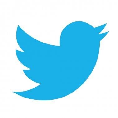 Modern Twitter Bird Icon