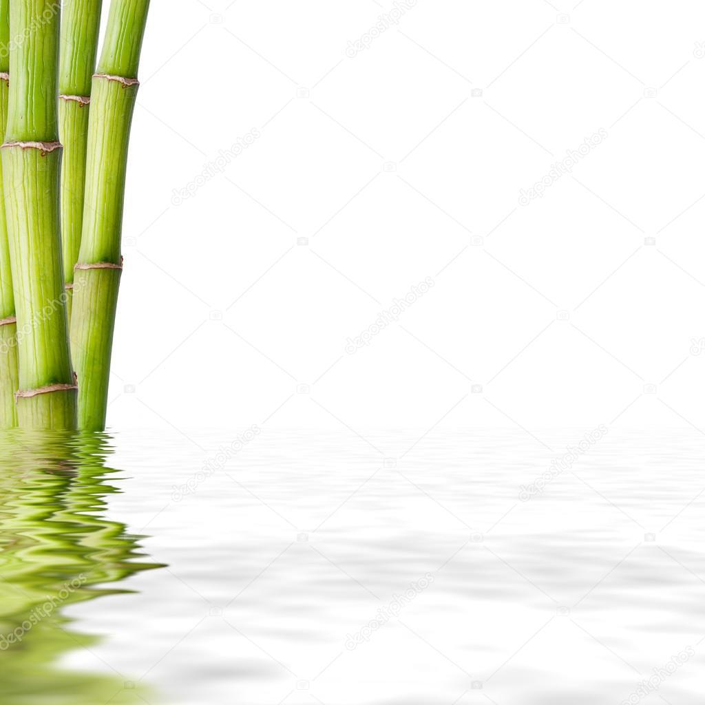 Decoration De Spa se rapportant à troncs de bambou, décoration de spa de fonds — photographie carballo