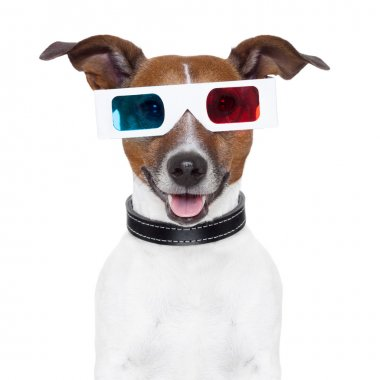 3d glasses movie cinema dog