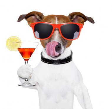 Dog cooling with a martini refreshment cocktail stock vector