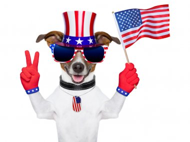 American dog with peace fingers waving american flag stock vector