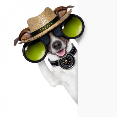 safari dog
