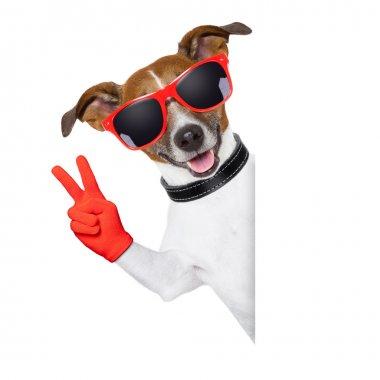 peace fingers dog