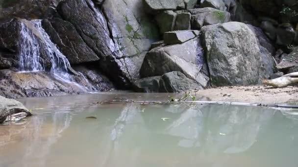 HD dolly, tropické vodopád v hlubokém lese