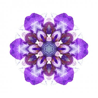 Violet flower mandala