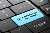Bildungskonzept: Kopf mit Glühbirne und Wissen ist Macht!