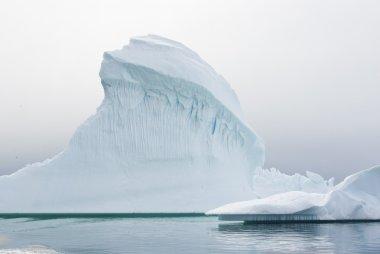 Iceberg in Antarctic waters.