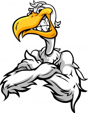 Aggressive Pelican or Seagull with Crossed Arms Cartoon Vector I