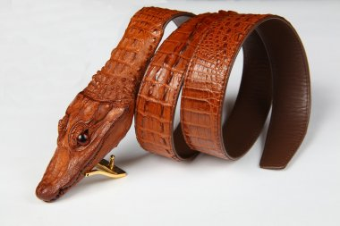 Male alligator strap-2