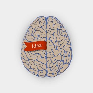 Creative vector illustration human brain