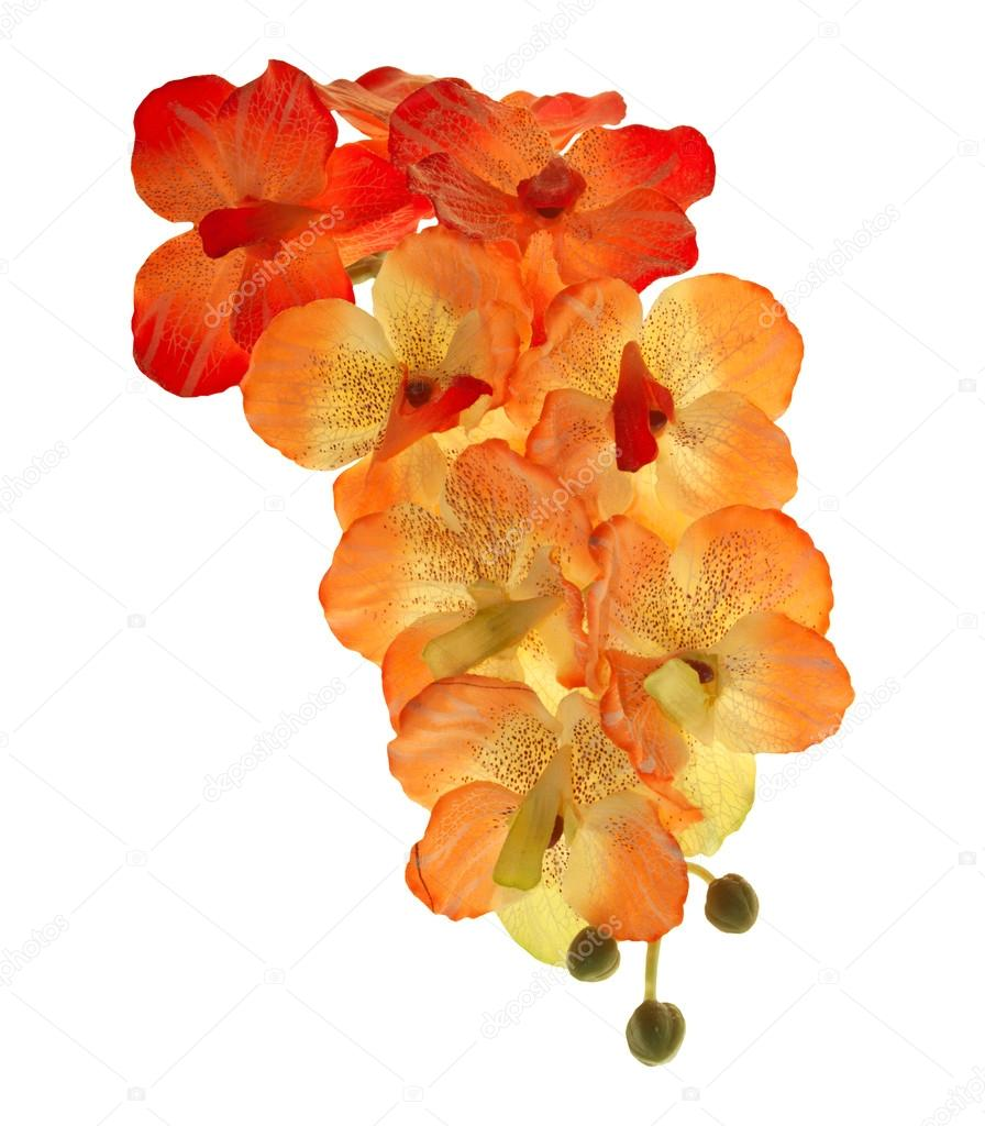 Artificial of blossom orchid flowers bouquet isolated on white balckground
