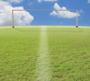 Green grass and football sport stadium