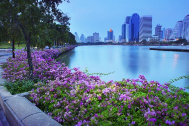beautiful land scape  with magenta papers flowers and water pond