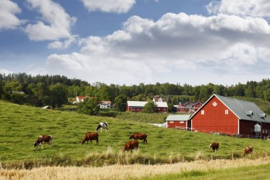 Small red farm houses