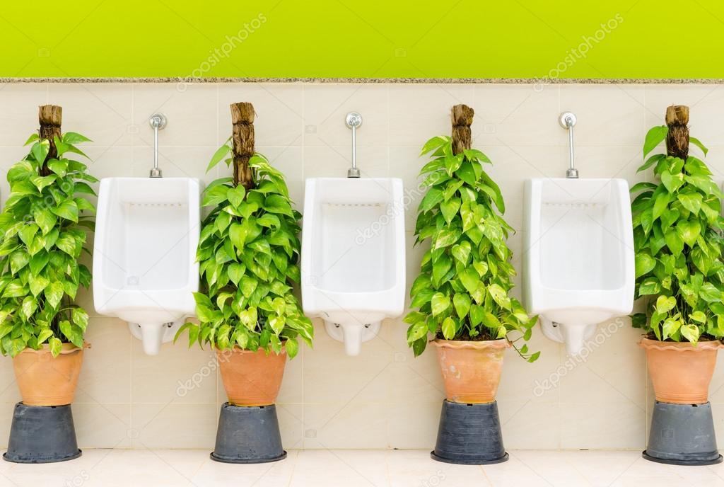 Interior ba o con orinal blanco fila y plantas for Plantas de interior precios