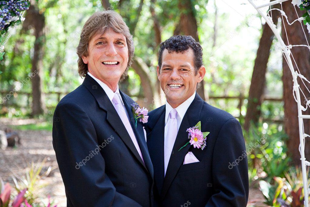 Para Piękny ślub Gejów Zdjęcie Stockowe Lisafx 22103067