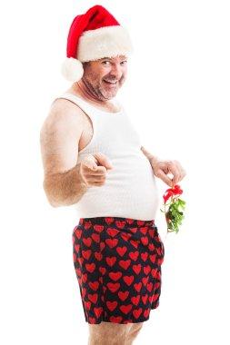 Christmas Mistletoe - Kiss Me Down There