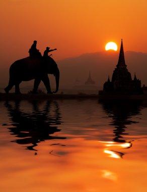 Elephant tourist in Thailand