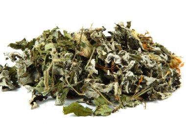 Medicinal plants. Herbs. Collection of medicinal herbs for tea.