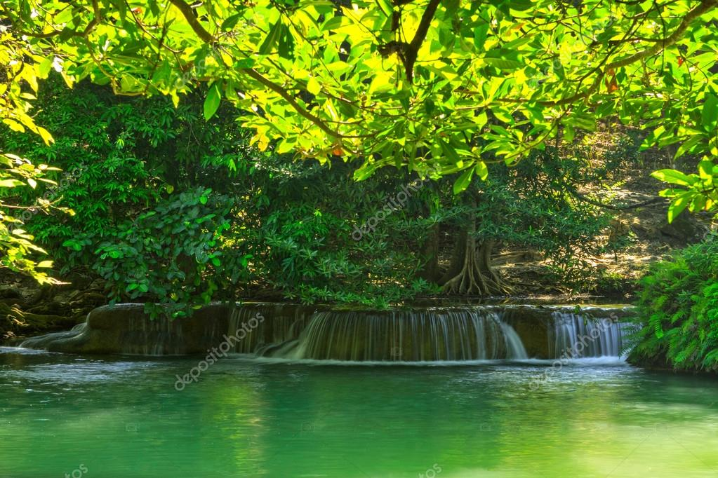 Фотообои Water fall in green forest