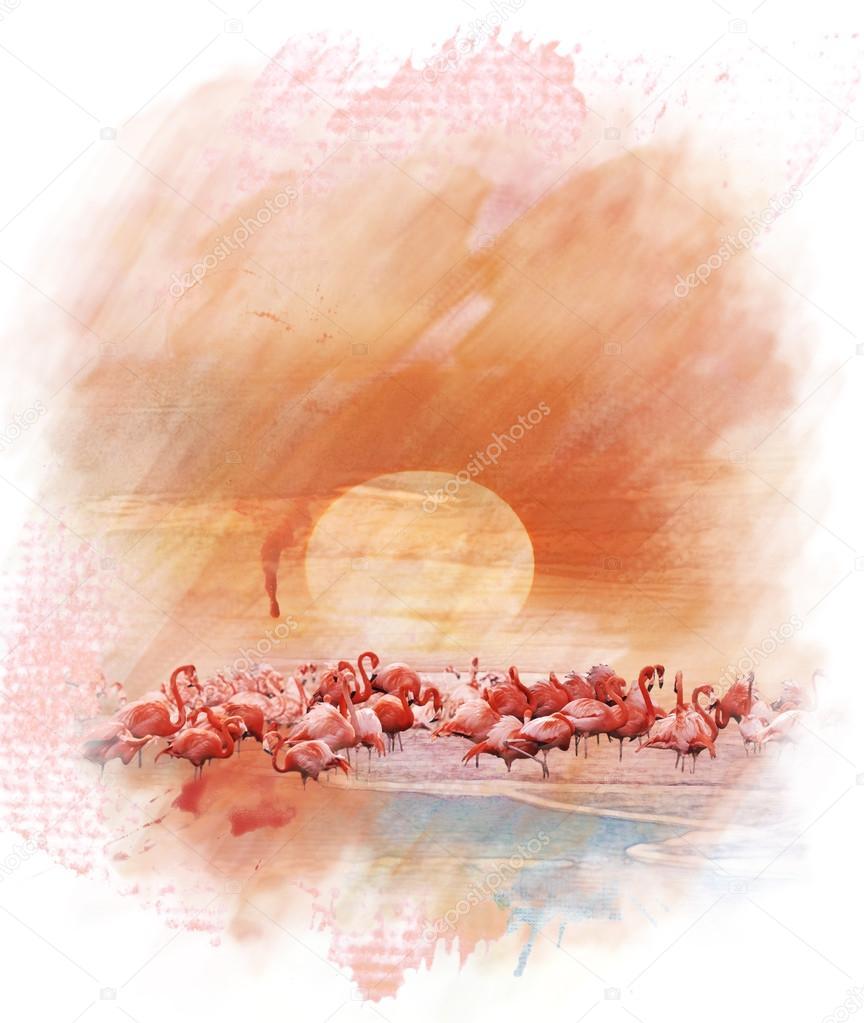 Akwarela Obraz Flamingi Zdjęcie Stockowe Svetas 48394619