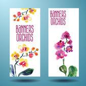 Fényképek festett akvarell kártya orchidea