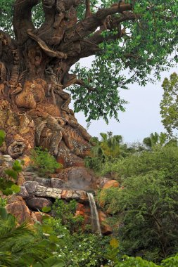 The Tree of Life at Disney World