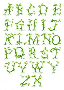 Plant alphabet letters
