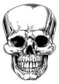 Totenkopf-Illustration