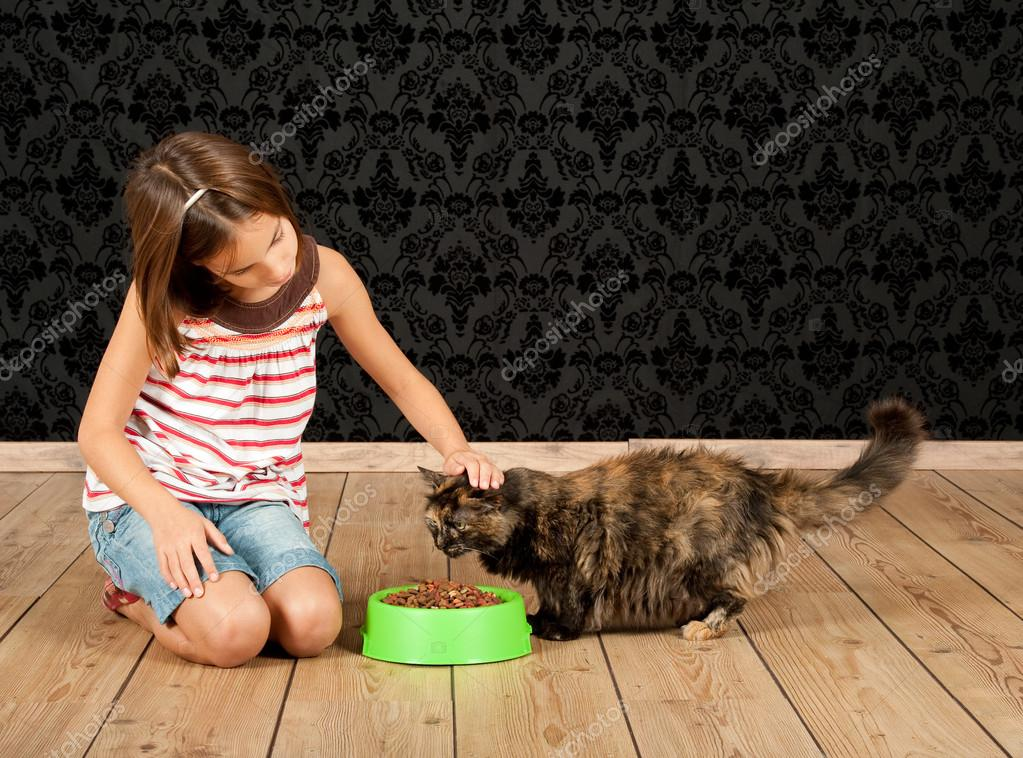 healthy dry cat food that cats like