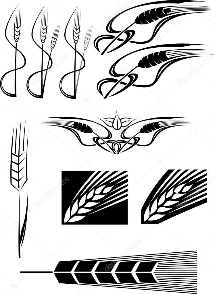 Buğday Ilahları Stok Foto Robsnowstock 30115113