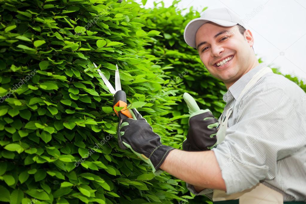 jardinero en el trabajo foto de stock minervastock