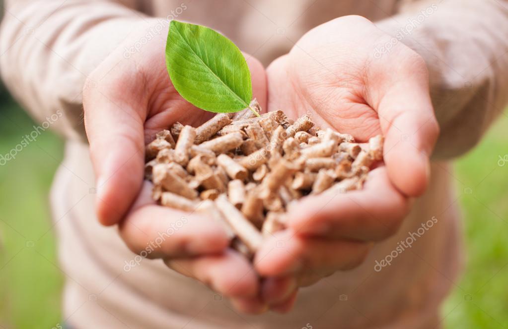 biomasa #hashtag