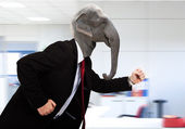Elephant business man in a hurry