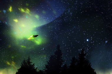 UFO and weird lights in the night sky
