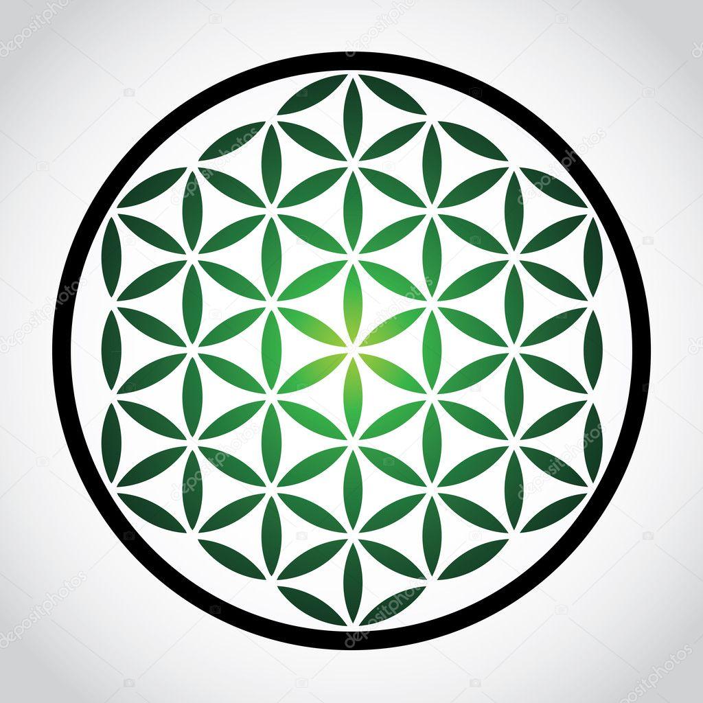 Flower of life symbol