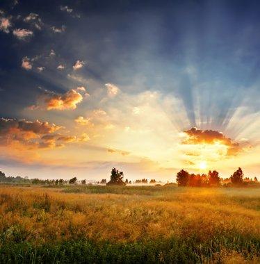 Landscape, sunny foggy dawn in a field stock vector