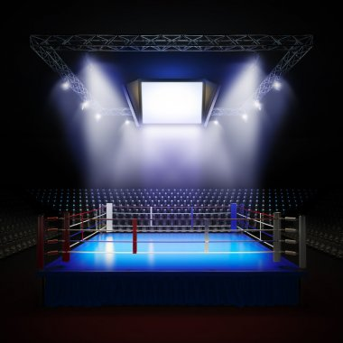 Empty professional boxing ring.