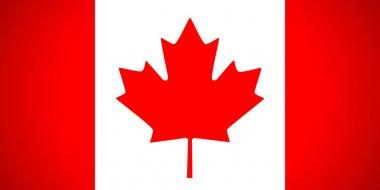 """Картина, постер, плакат, фотообои """"Флаг Канады. Векторные иллюстрации."""", артикул 15619889"""