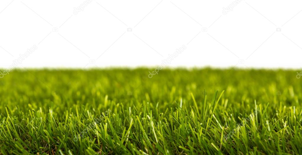 Artificial Fresh spring green grass panorama isolated on white