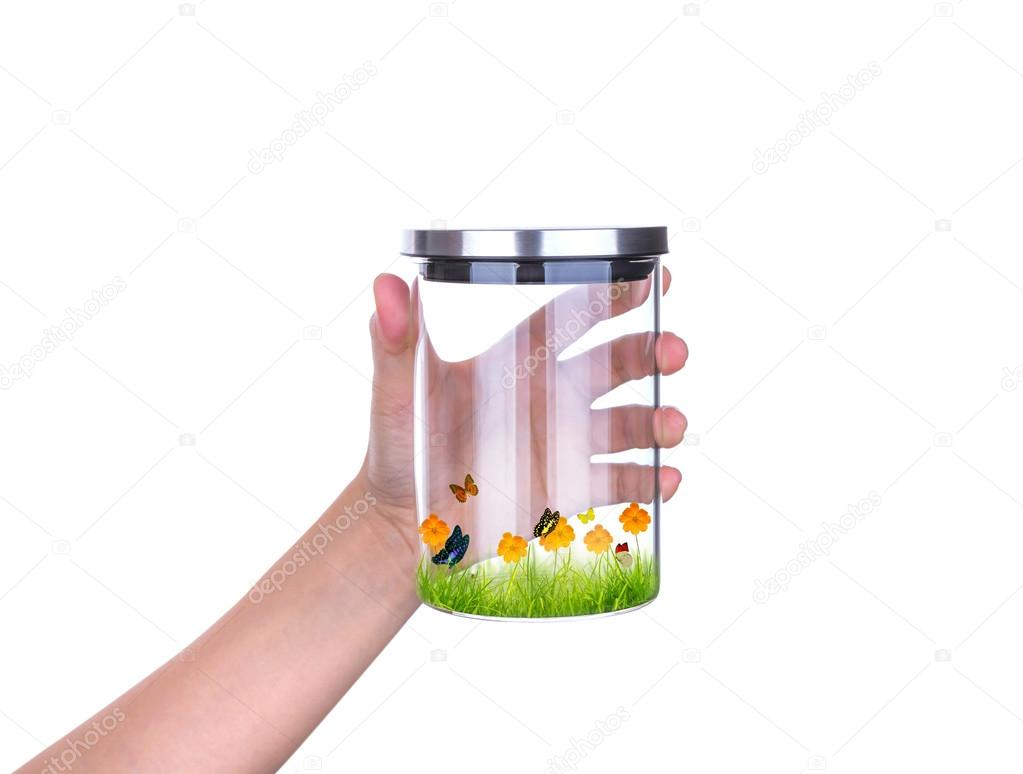 Hand hold glass jar with fresh spring green grass and butterfly