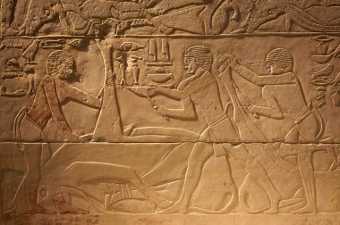 Old Egypt ancient writings on stone background